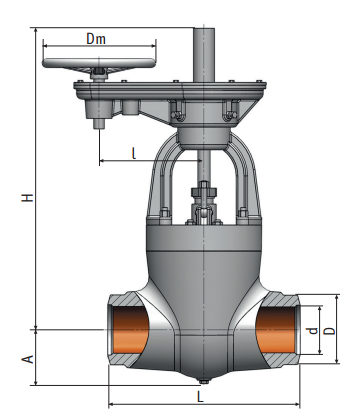 880-250-ЦЗ gate valve on a high pressure|Picture
