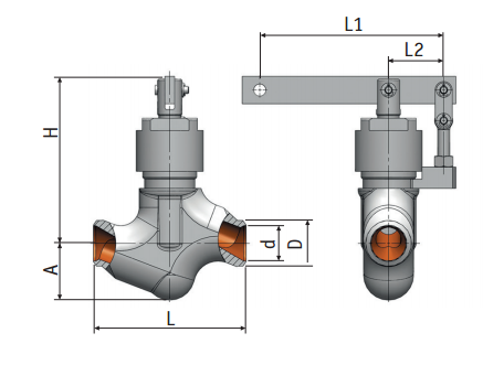 Regulating needle valves with lever actuation 9с-5-5-2| Picture